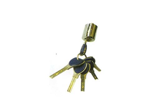 29量子锁芯